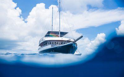 5 Reasons Why You'll Love Vacationing on a Safari in Maldives